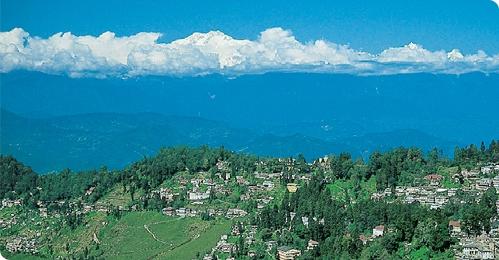 Darjeeling Singalila Ridge